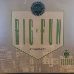 Inner City - Big Fun - Front Cover